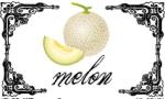 sticker-melon-25x15